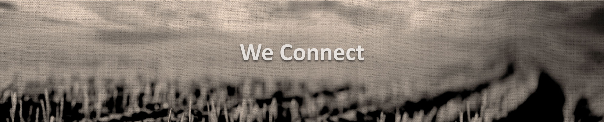 We Connect 001